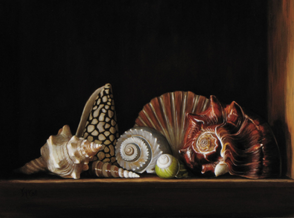 Seven Shells in a Wooden Box   © Victoria McCall
